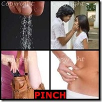 PINCH- 4 Pics 1 Word Answers 3 Letters