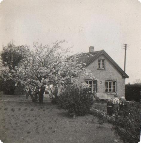Mormor og morfars hus på Falster