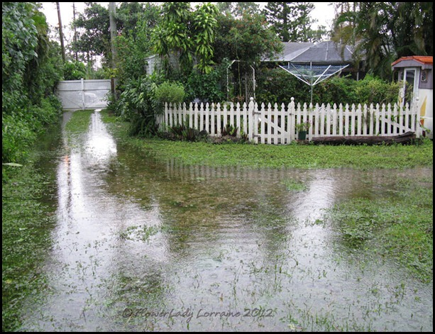 08-27-isaac-flooding7