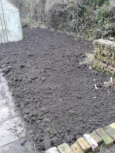 Laprofesseur een nieuwe moestuin for Candide cultiver son jardin