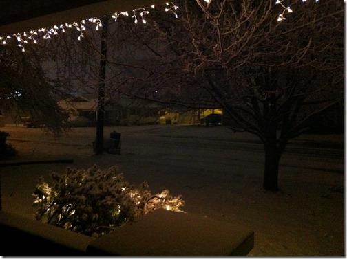 2012-12-25 White Christmas 10