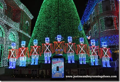 Osborne Family Spectacle of Dancing Lights (9)