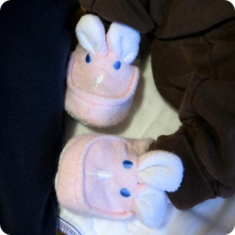 Liberty's Bunny Slippers