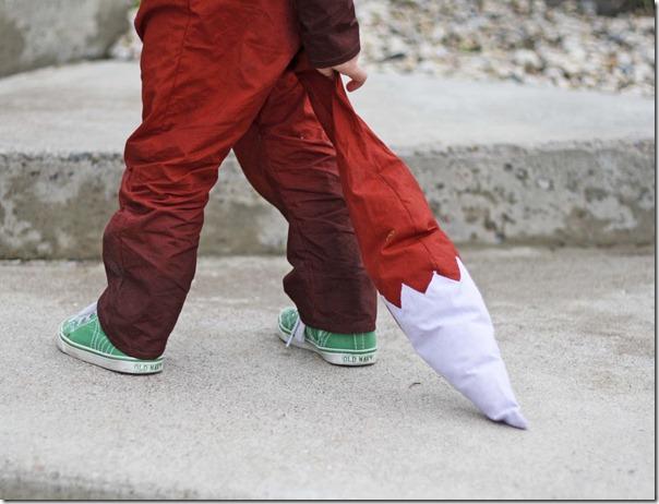 disfraz de zorro (4)