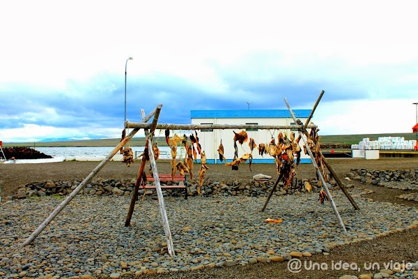 Hvammstangi-Islandia.jpg