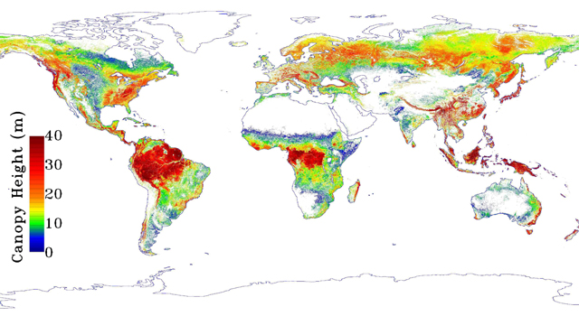 Global map of forest height produced from NASA's ICESAT/GLAS, MODIS and TRMM sensors. The map will advance our understanding of Earth's forest habitats and their role in Earth's carbon cycle. NASA / JPL-Caltech