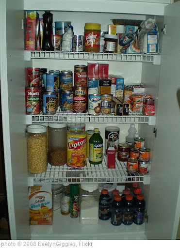 'organized pantry' photo (c) 2008, EvelynGiggles - license: http://creativecommons.org/licenses/by/2.0/