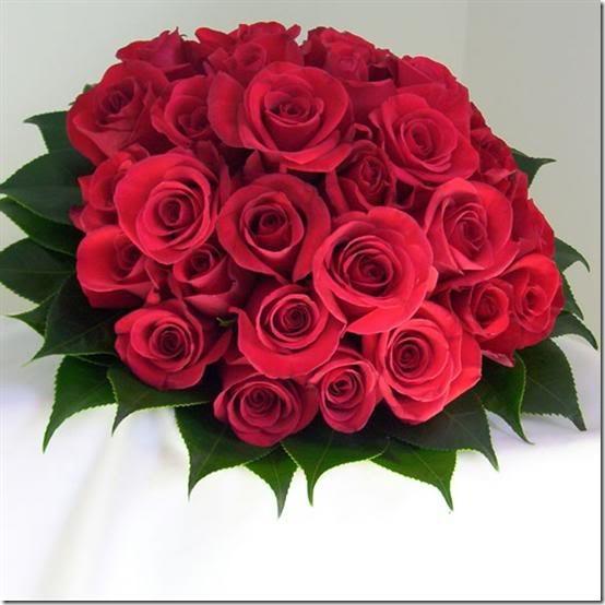 para san valentin rosas y flores (17)
