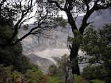 Trees and Ratu crater, Tangkuban Parahu (Daniel Quinn, July 2009)