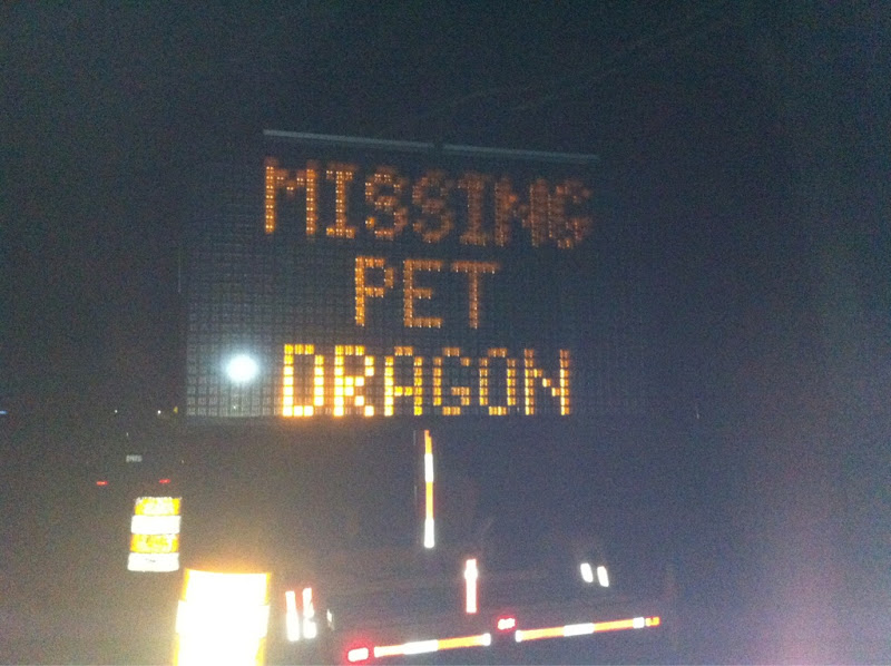 Missing Pet Dragon.jpeg