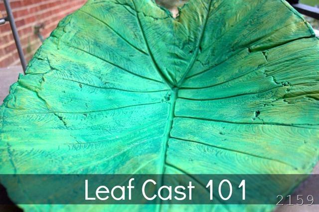 leaf cast