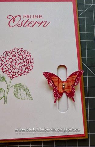 Schmetterlingsverschluß14-fertig