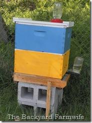 hive 05