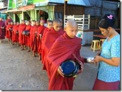 Burm-iui[1]