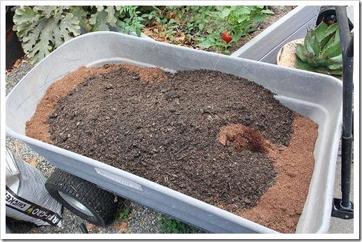 111002_soil_coir soil_01