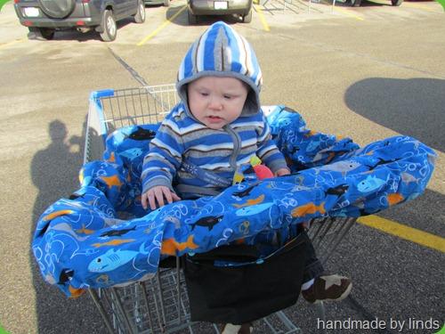 eli's cart cover 031