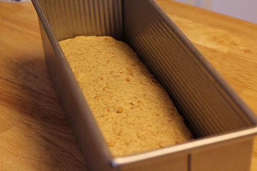 sprouted-spelt-bread_2424