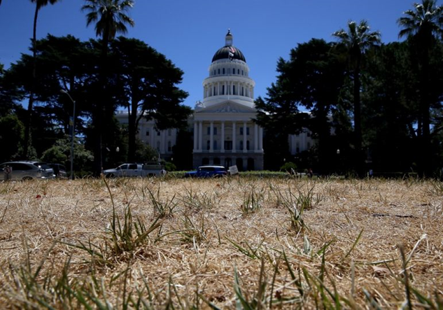 The lawn in front of the California State Capitol is seen dead on 18 June 2014 in Sacramento, California. As the California drought conitnues, the grounds at the California State Capitol are under a reduced watering program and groundskeepers have let sections of the lawn die off in an effort to use less water. Photo: Justin Sullivan / Getty Images