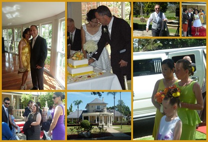 2012 11 05 Doru's Wedding