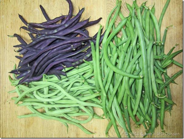 three_beans
