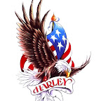 eagle-usa-flag-harley-davidson-27.jpg