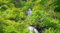 Curug Sidoharjo – Air Terjun nan Indah di Samigaluh Kulon Progo