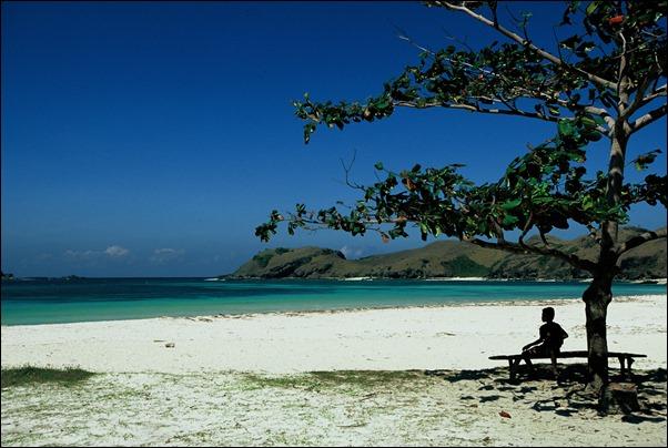 شاطئ لوفينا
