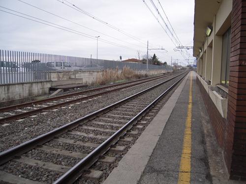 DSCN5589