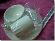 Platos plastificados