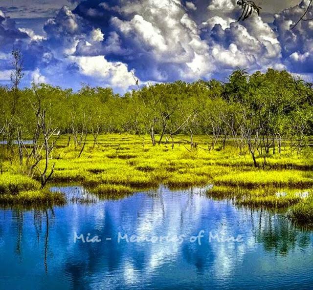 Imaginasi Alam