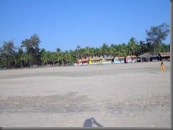 Agonda Beach 12