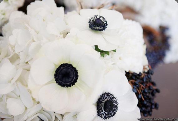 384442_301876543182906_266614400_n  ladybird poppy floral design