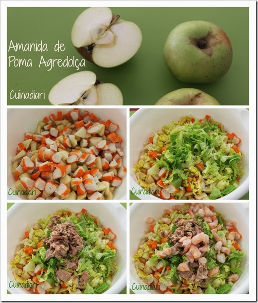 1-1amanida poma agredolça-cuinadiari-1