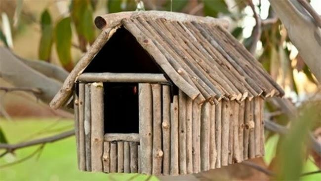 bird_house_18b5g6b-18b5g6h