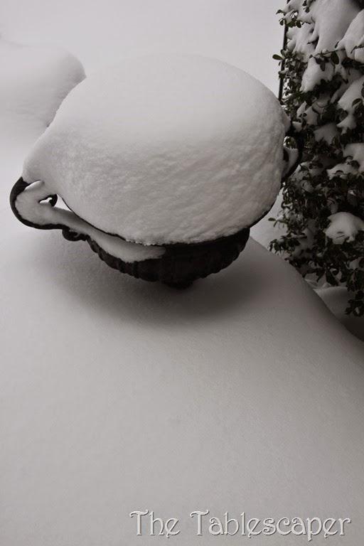 January Snow Storm Juno 002