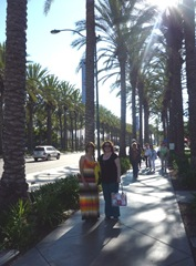 barb & me palm trees