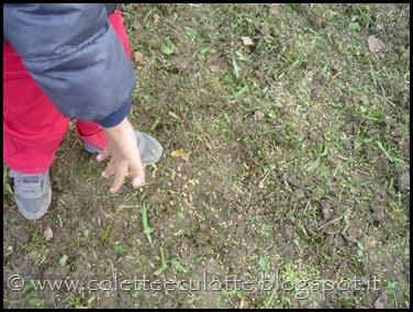 I bambini delle classi 1° della Scuola Primaria di Padulle piantano il grano! (10)