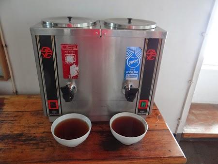 25. Ceai de Azore.JPG