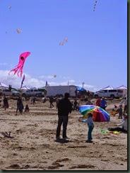 Kite Festival 2014 019