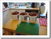 strawberries 2011-06-02 001