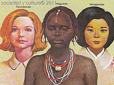 tipos de razas