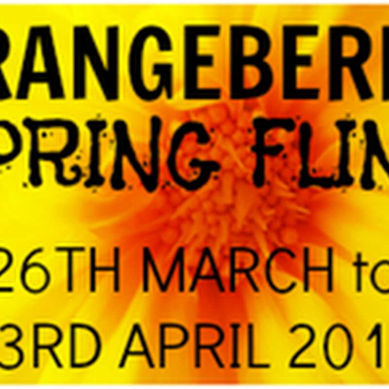 Orangeberry Spring Fling – A Heart Pumping Adventure (Human Body Detectives) by Dr. Heather Manley