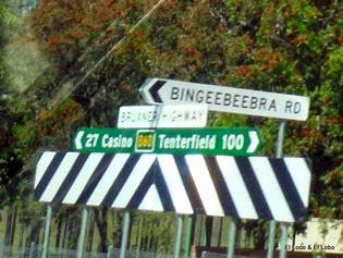 Bingeebeebra