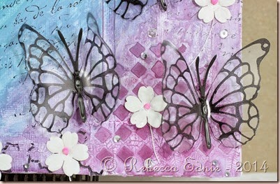 rainbow butterflies canvas closeup purple