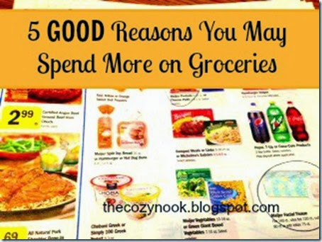 5 Good Reasons You May Spend More on Groceries - The Cozy Nook