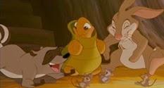 09 le raton laveur