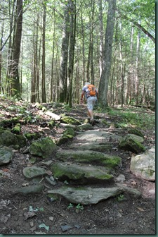 Bear Hair Gap Trail, Vogel State Park, Blairsville, Georgia