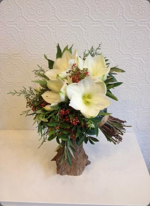 amaryllis passionflower 1499543_672595656125748_1804359496_n