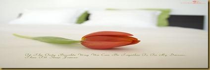 love-love-9434018-1024-768