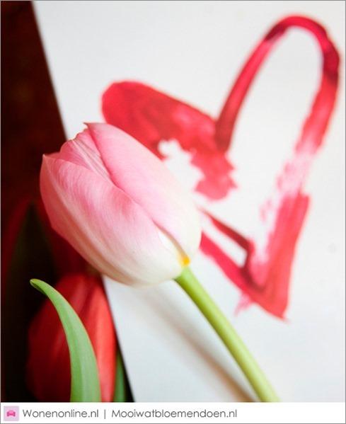 valentijnsdag-zeg-het-met-tulpen-6